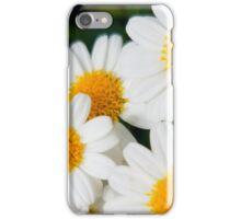 Daisies 2 iPhone Case/Skin