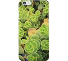 Spiral Succulents iPhone Case/Skin