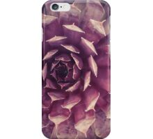 Purple Succulent iPhone Case/Skin