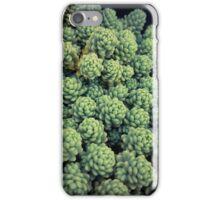 Succulents 13 iPhone Case/Skin