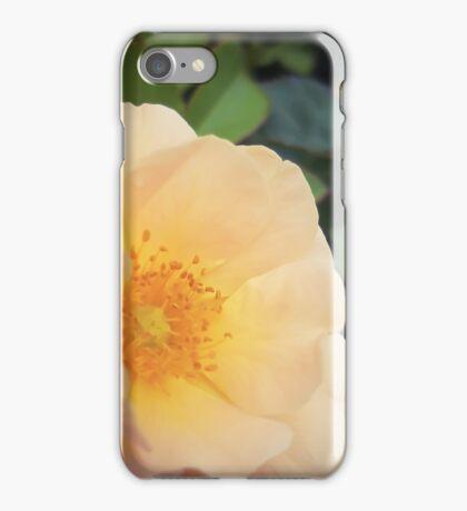 Millions of Peaches iPhone Case/Skin