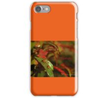 The Ladies Gathering © Vicki Ferrari iPhone Case/Skin