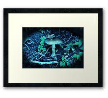 Lomography Mushroom Photography Framed Print