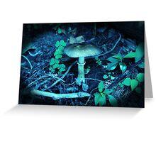 Lomography Mushroom Photography Greeting Card