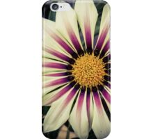 Flower 22 iPhone Case/Skin