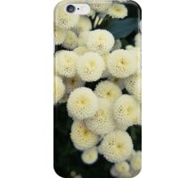 Spongey Flowers iPhone Case/Skin