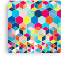 Super Bright Color Fun Hexagon Pattern Canvas Print