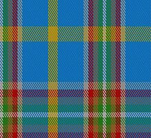 01601 Atikokan Commemorative Tartan  by Detnecs2013