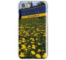 Alaska Gold iPhone Case/Skin