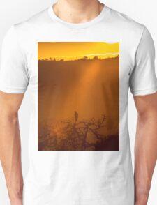 Aquila Dawn T-Shirt