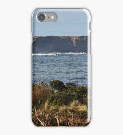 Lawrence Rocks iPhone Case/Skin