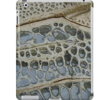 Volcanic Rock and Water iPad Case/Skin