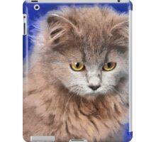 sad cat iPad Case/Skin