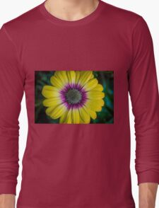 Dayzee Long Sleeve T-Shirt