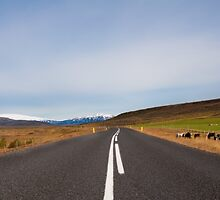 Beautiful mountain road in Iceland by Stanciuc