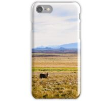 Icelandic horses on a beautiful green field with amazing colored sky, Iceland iPhone Case/Skin