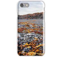 Icelandic beach with black lava rocks, Snaefellsnes peninsula, Iceland iPhone Case/Skin