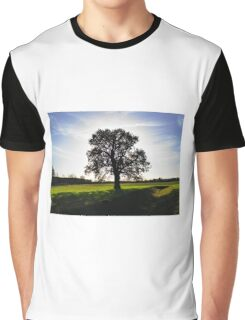 Backlit Tree Graphic T-Shirt