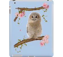 Fledgling Owl in the Cherry Blossom iPad Case/Skin