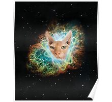 Space Sphynx Overlord, Cats in Space Poster