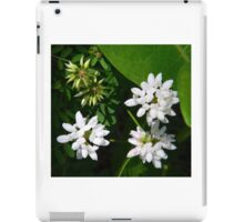 Crown Vetch iPad Case/Skin