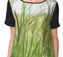 Typha Latifolia Chiffon Top