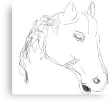 Copy/Horses head ornament -(050716)- Digital artwork: MS Paint Canvas Print