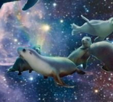 Sea lions in space Sticker