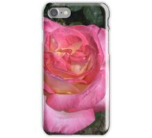 Brightness and Intensity iPhone Case/Skin