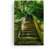 Wooded Stairway Canvas Print