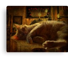 Sleeping cat on the mantle Canvas Print