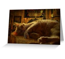 Sleeping cat on the mantle Greeting Card