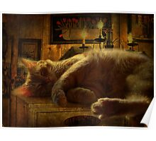 Sleeping cat on the mantle Poster