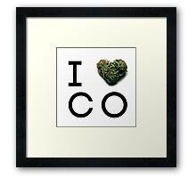 Colorado Green State Framed Print