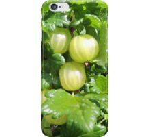 Vegetable Garden: Gooseberries  iPhone Case/Skin