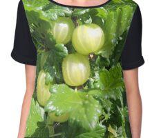 Vegetable Garden: Gooseberries  Chiffon Top