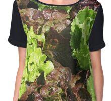 Vegetable Garden: Lettuce Galore Chiffon Top
