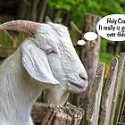 Goat Looking For Greener Pastures by TSFPhotoCartoon