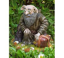 Forest gnome Photographic Print