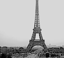 B&W - Eiffel Tower Paris France 2015 by Buckwhite