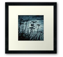 Midnight Dreams of the Sea Framed Print