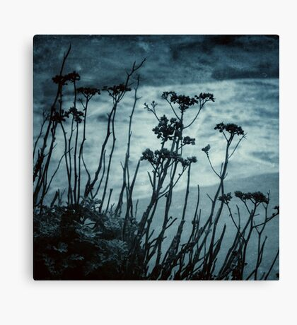 Midnight Dreams of the Sea Canvas Print
