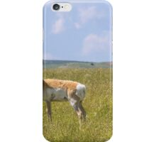 Pronghorn iPhone Case/Skin