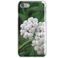 Yarrow Flower iPhone Case/Skin