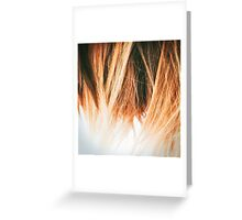 Brown hair don't care Greeting Card
