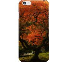 Japanese Maple Tree in Autumn iPhone Case/Skin