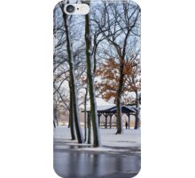 The Early Spring  iPhone Case/Skin