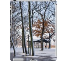 The Early Spring  iPad Case/Skin