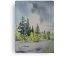 The Downhill Road Canvas Print