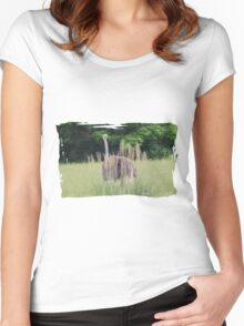 Ostrich Plays Peek A Boo Women's Fitted Scoop T-Shirt